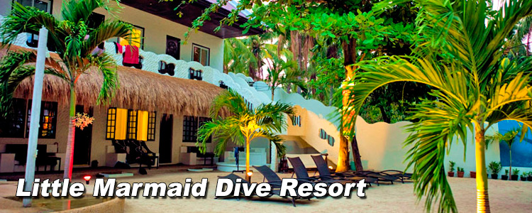little-marmaid-dive-resort